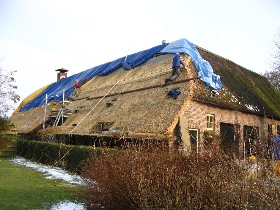 constructie van een rieten dak
